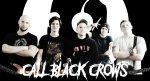 Call Black Crows